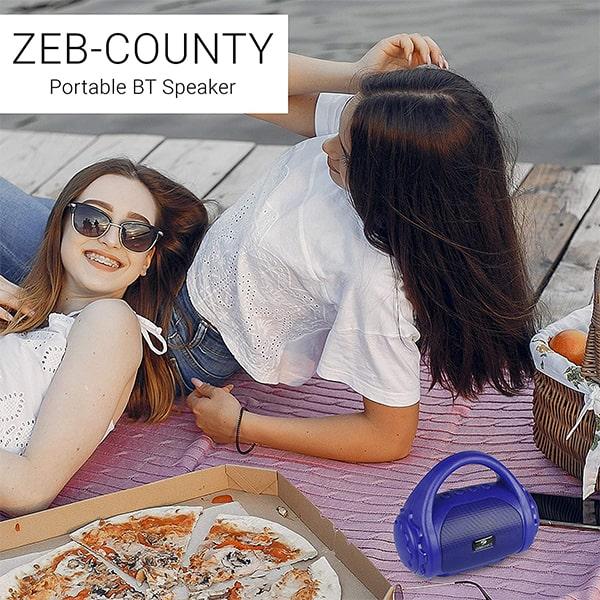 Zebronics Zeb-County Bluetooth Speaker with Built-in FM Radio